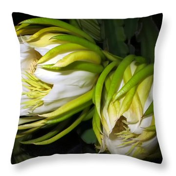 Night Blooming Cereus 31 Throw Pillow