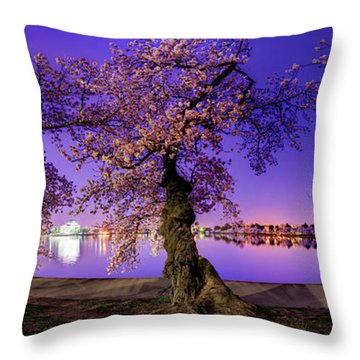 Night Blossoms 2014 Throw Pillow