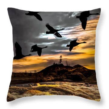 Night Flight Throw Pillow by Bob Orsillo