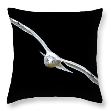 Throw Pillow featuring the photograph Night Flight by Brian Stevens