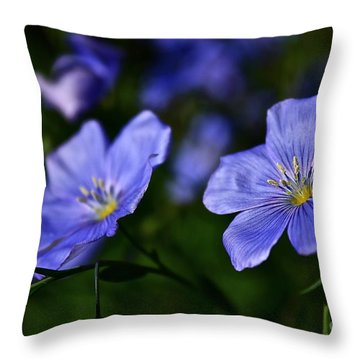 Throw Pillow featuring the photograph Night Garden by Linda Bianic