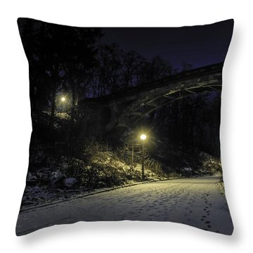 Night Hushed The Shadowy Earth Throw Pillow
