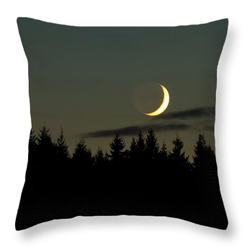 Throw Pillow featuring the photograph Night Light  by Rose-Maries Pictures