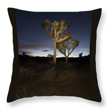 Night Light Painting Joshua Tree National Park Throw Pillow