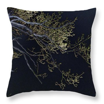 Night Throw Pillow by Lois Bryan