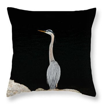 Night Of The Blue Heron 2 Throw Pillow by Anthony Baatz