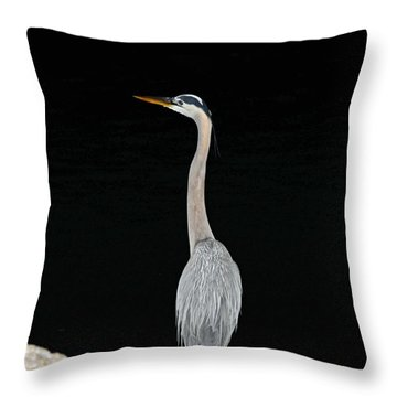 Night Of The Blue Heron 3 Throw Pillow