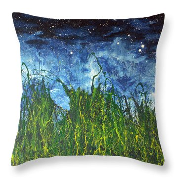 Night Sky 2007 Throw Pillow