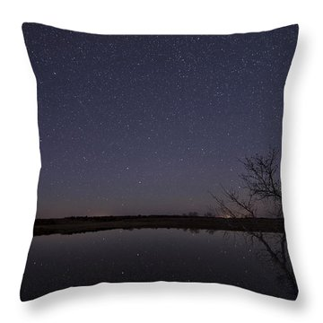 Night Sky Reflection Throw Pillow