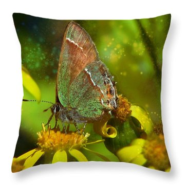 Night Vision - Moth And New Mexico Wildflowers  Throw Pillow