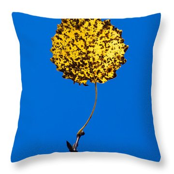 Nightlight Throw Pillow by Alexander Senin