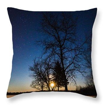 Night's Shadows Throw Pillow