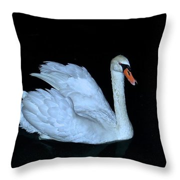 Nighttime Swim Throw Pillow by Rita Mueller