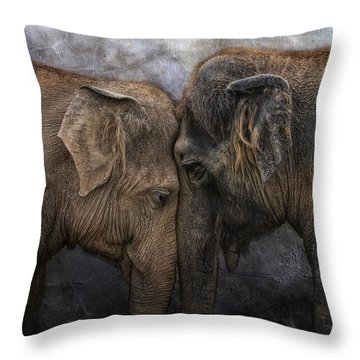 Nighty Night Darling Throw Pillow