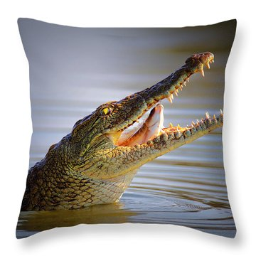 Nile Crocodile Swollowing Fish Throw Pillow by Johan Swanepoel