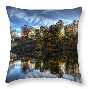 Niles Reflections Throw Pillow