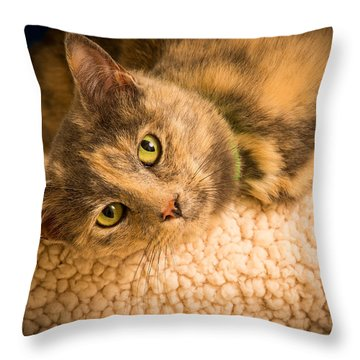 Throw Pillow featuring the photograph Nintendo  by Janis Knight