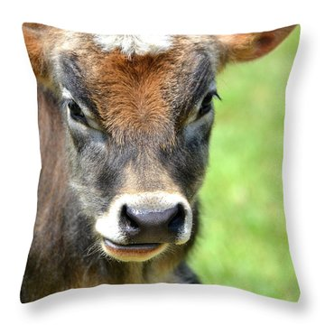 No Bull Throw Pillow