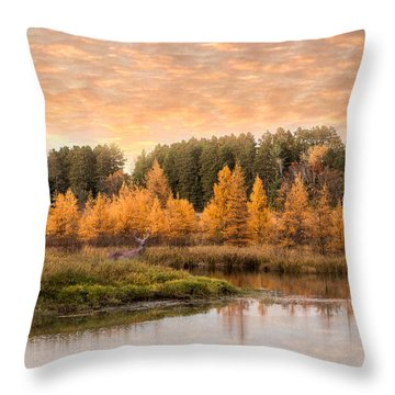 Throw Pillow featuring the photograph Tamarack Buck by Patti Deters