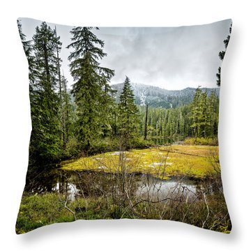 Throw Pillow featuring the photograph No Man's Land by Belinda Greb