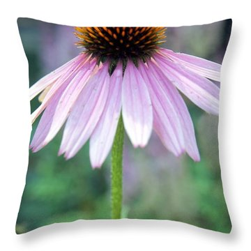 Throw Pillow featuring the photograph No Moment Like The Present by Mary Lou Chmura