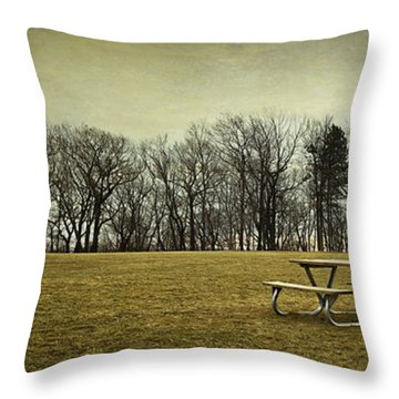 No More Picnics Throw Pillow
