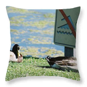 Throw Pillow featuring the photograph No Swimming by Kerri Mortenson