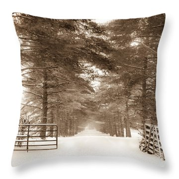 No Trespassing - Sepia Throw Pillow