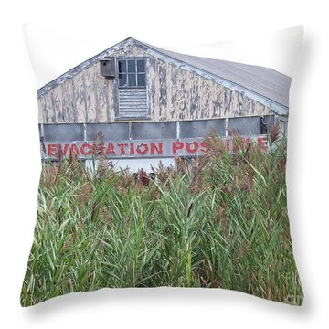 Newburyport Throw Pillow