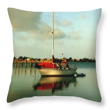 Noah's Jubilee Throw Pillow by Karen Wiles