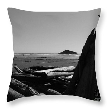 Noble Remnants Throw Pillow