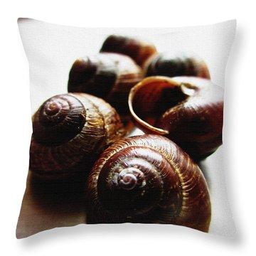 Nobody Home Throw Pillow