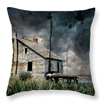 Nobody's Home Throw Pillow by Lois Bryan