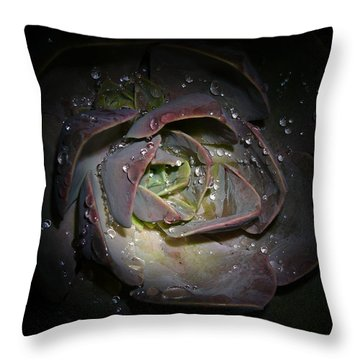 Nocturnal Diamonds Throw Pillow