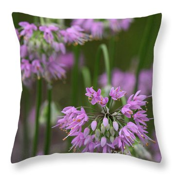 Nodding Wild Onion Throw Pillow by Daniel Reed
