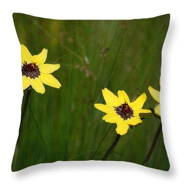 #nokxl Throw Pillow by Becky Furgason