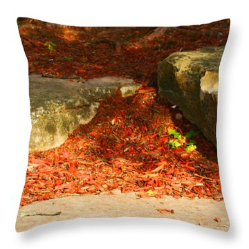 Nome Land Throw Pillow