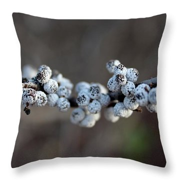 Nonpareils Throw Pillow