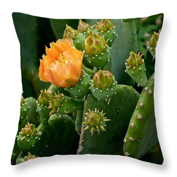 Nopal 1 Throw Pillow