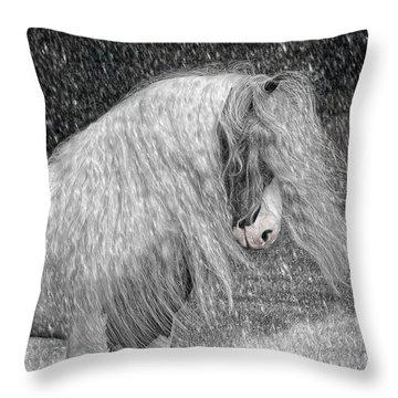 Nor Easter Throw Pillow by Fran J Scott