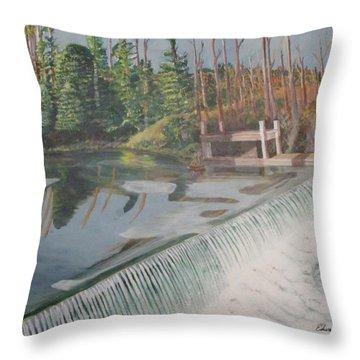 Nora Mill Waterfall Throw Pillow