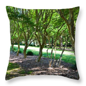 Throw Pillow featuring the painting Norfolk Botanical Garden 3 by Lanjee Chee