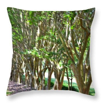 Throw Pillow featuring the painting Norfolk Botanical Garden 5 by Lanjee Chee
