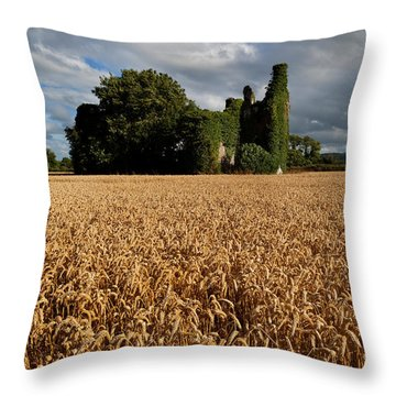 Norrisland Castle, County Waterford Throw Pillow