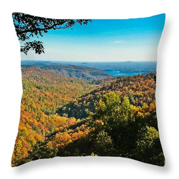 North Carolina Fall Foliage Throw Pillow
