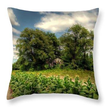 North Carolina Tobacco Farm Throw Pillow by Benanne Stiens