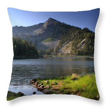 North Face Of Jughandle Mountain Throw Pillow