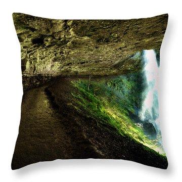 North Falls Throw Pillow
