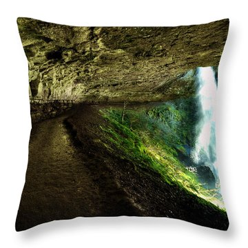 North Falls Throw Pillow