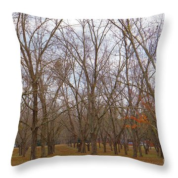 North Florida Orchard In Fall Throw Pillow